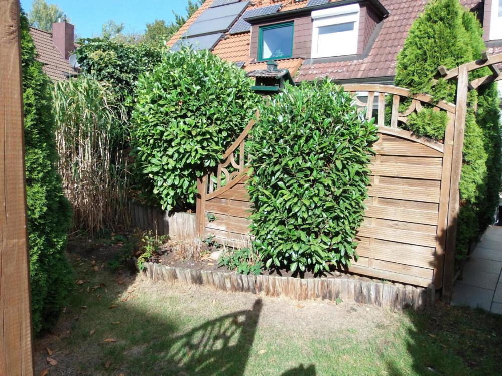 Garten III.png