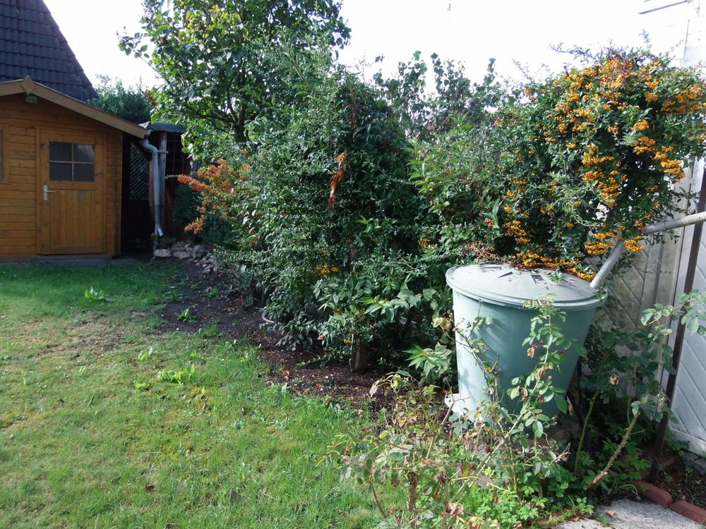 Garten I